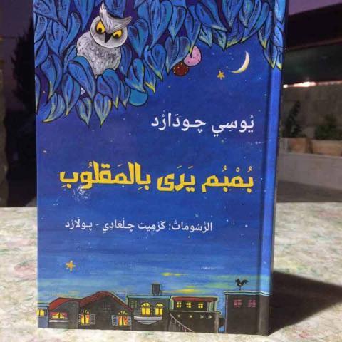 بُمبُم يقرأ بالمقلوب: عن العسر التعلمي والتكيّف المجتمعي