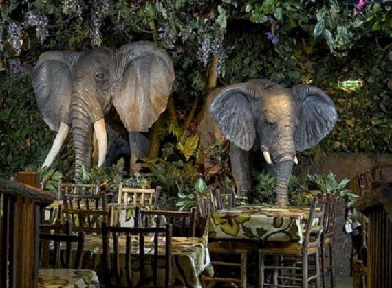غابة استوائية في لندن - مطعم مميز للأطفال